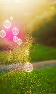 Download free mobile wallpaper 22303: Landscape, Bubbles, Sun, Grass for phone or tab. Download images, backgrounds and wallpapers for mobile phone for free.