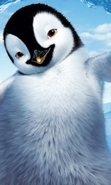 Download free mobile wallpaper 42998: Pinguins,Pictures,Animals for phone or tab. Download images, backgrounds and wallpapers for mobile phone for free.