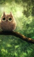 Download free mobile wallpaper 22257: Birds, Pictures, Owl for phone or tab. Download images, backgrounds and wallpapers for mobile phone for free.