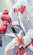 Download free mobile wallpaper 8103: Animals, Winter, Birds, Snow, Drawings for phone or tab. Download images, backgrounds and wallpapers for mobile phone for free.