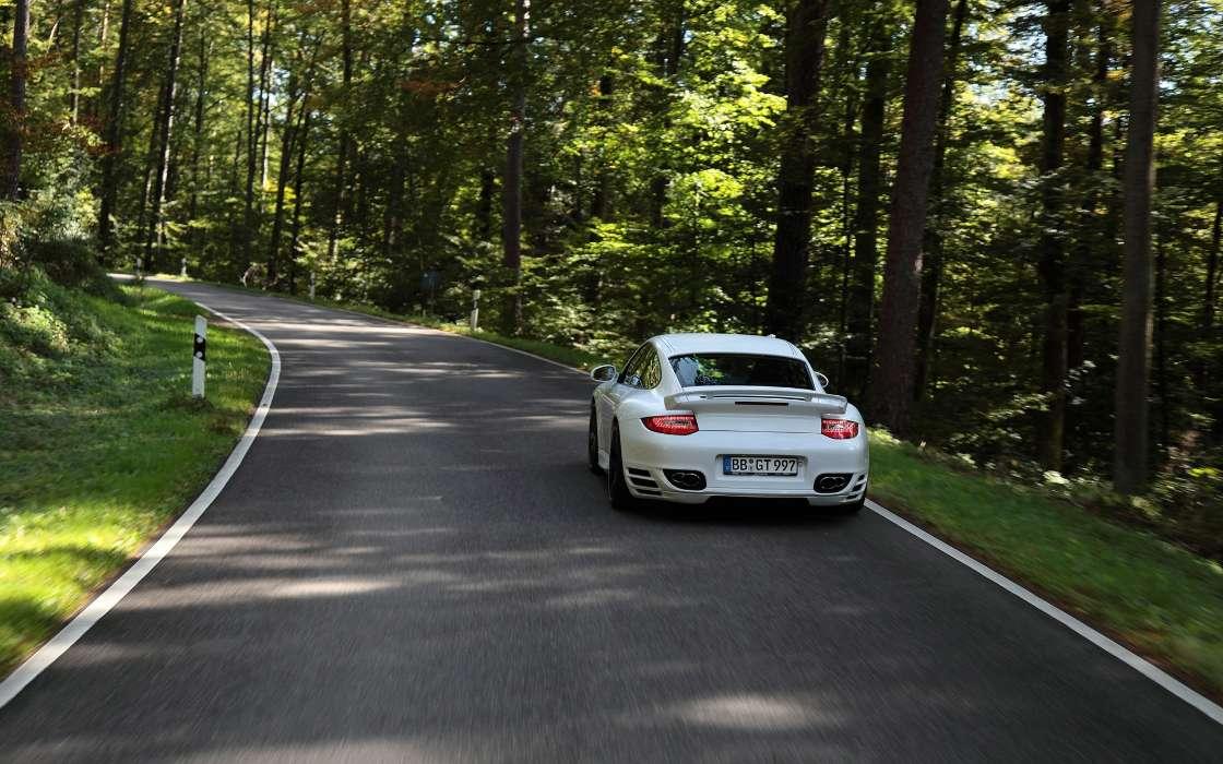 Машины в картинках лето