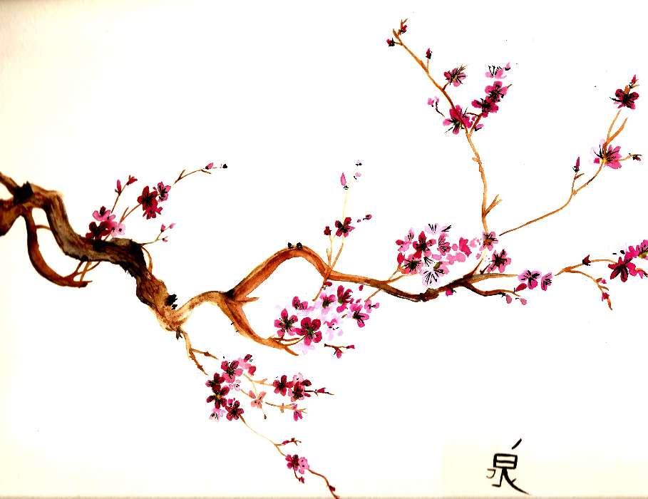 Telechargez Une Image Sur Votre Telephone Plantes Fleurs Asie