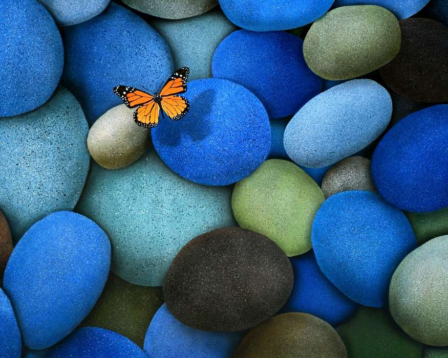 Download mobile wallpaper Butterflies Insects Background Stones