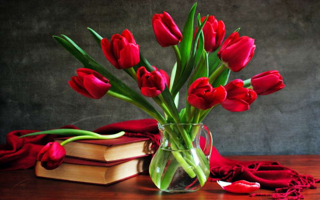 Download mobile wallpaper Plants, Flowers, Tulips, Bouquets, Books, Still life for free.