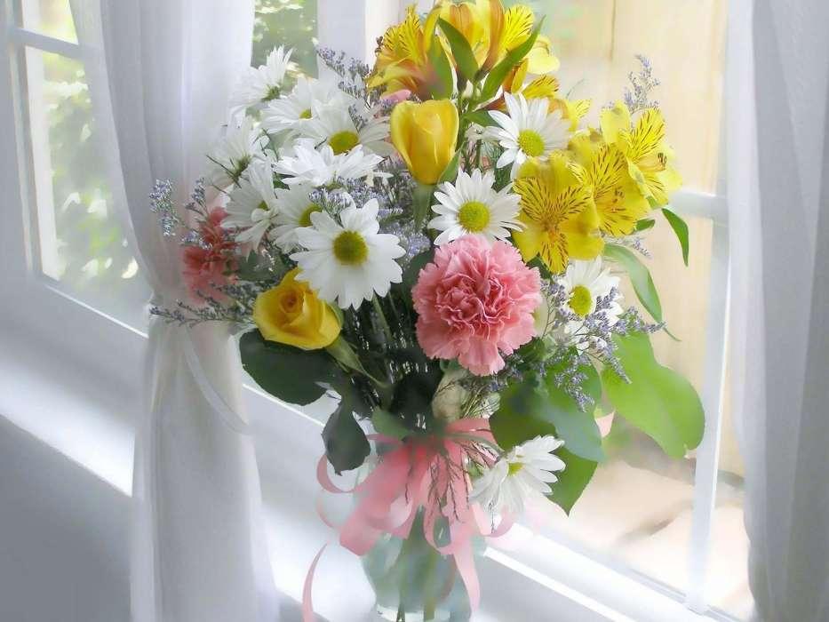 Красивые, картинки цветы добрый день