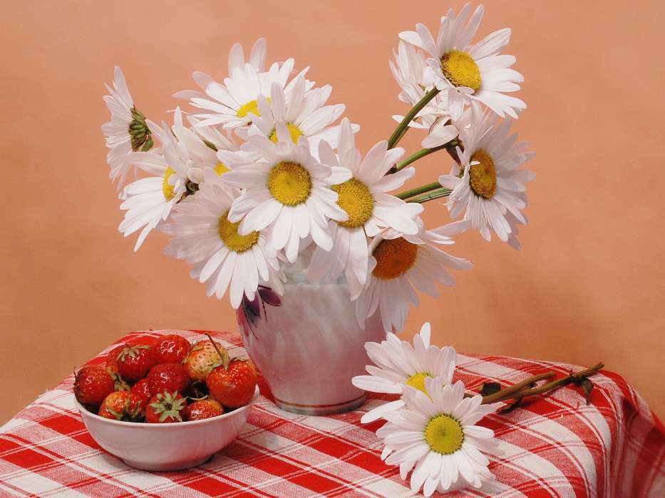 Download mobile wallpaper Plants, Flowers, Food, Strawberry, Camomile for free.