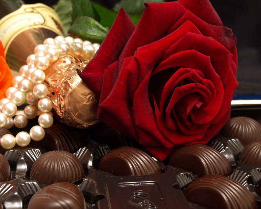 Download mobile wallpaper Holidays, Flowers, Food, Roses, Candies for free.