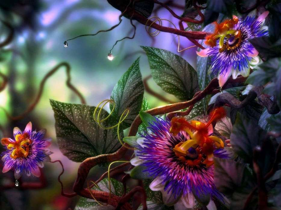 Download mobile wallpaper Plants, Flowers, Fantasy for free.