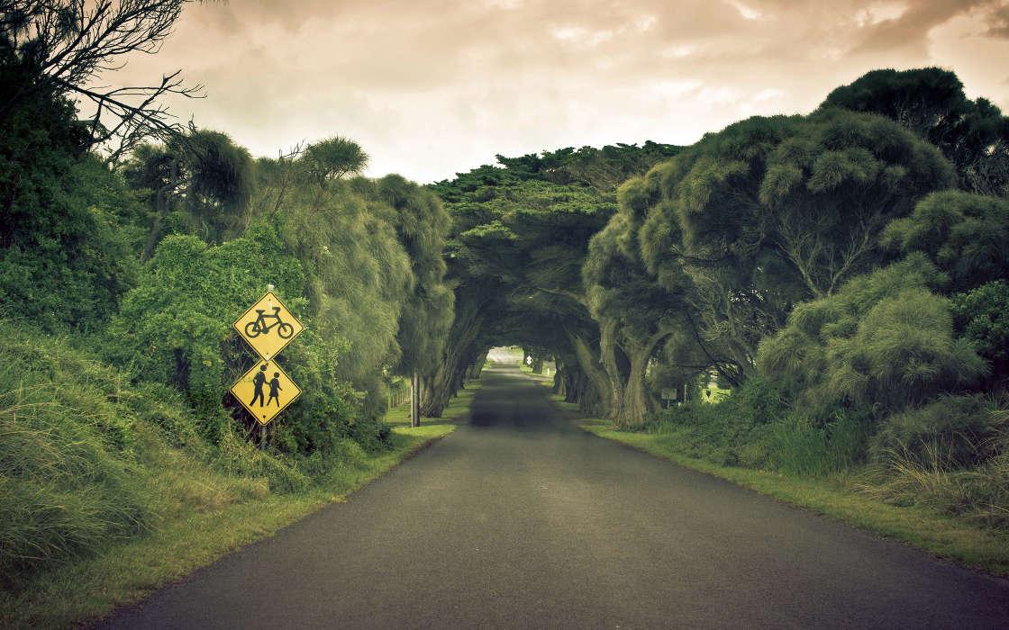 Descargar la imagen en tel fono paisaje rboles carreteras gratis 24955 - Caser asistencia en carretera telefono ...