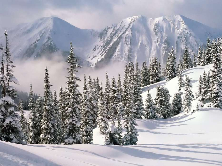Download mobile wallpaper Landscape, Winter, Trees, Mountains, Fir-trees for free.