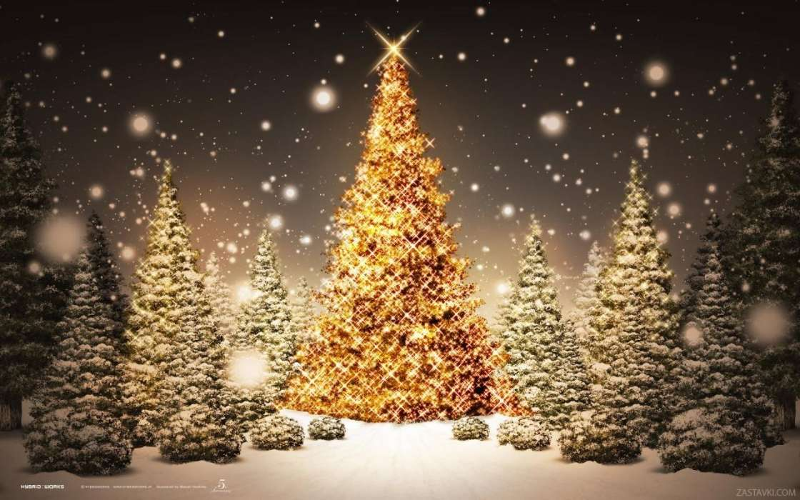 Download mobile wallpaper Holidays, Winter, Trees, New Year, Snow, Fir-trees, Christmas, Xmas for free.