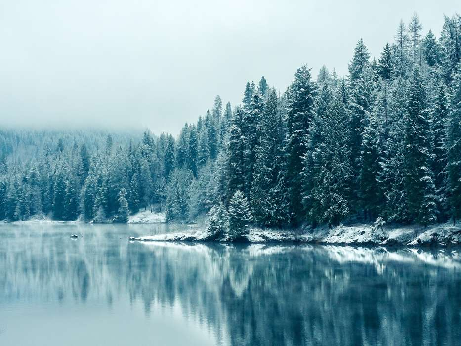 Download mobile wallpaper Landscape, Winter, Rivers, Trees, Snow, Fir-trees for free.