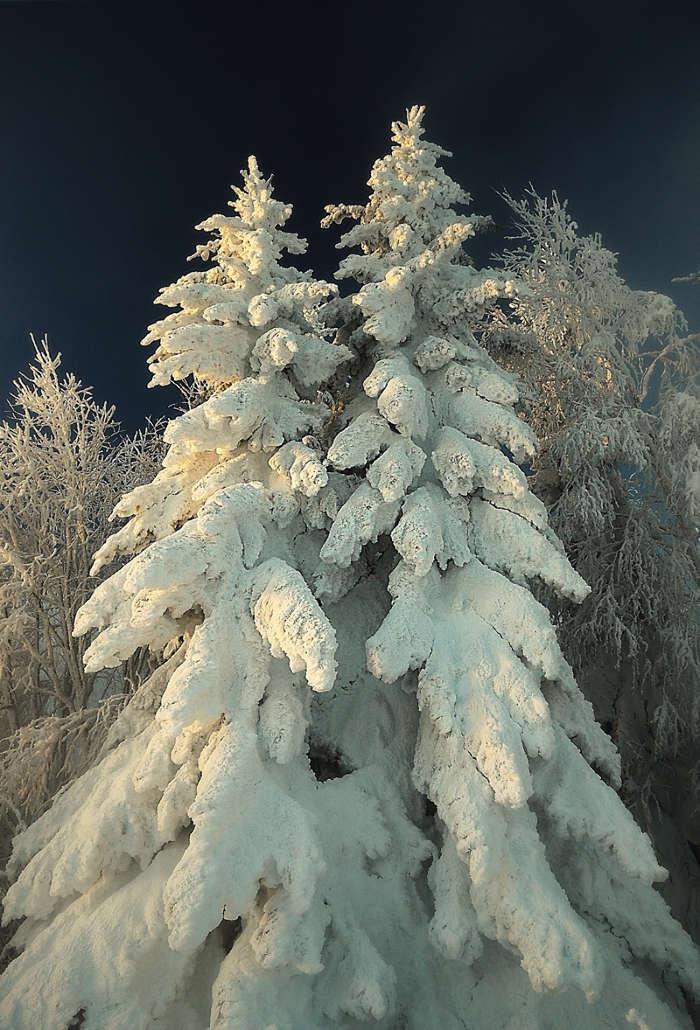 даёт фото на телефон снег номер рано