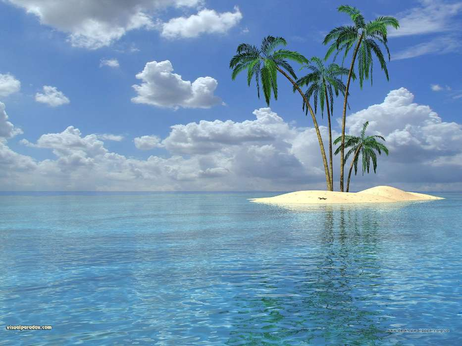 Download mobile wallpaper Landscape, Water, Trees, Sea, Palms, Summer for free.