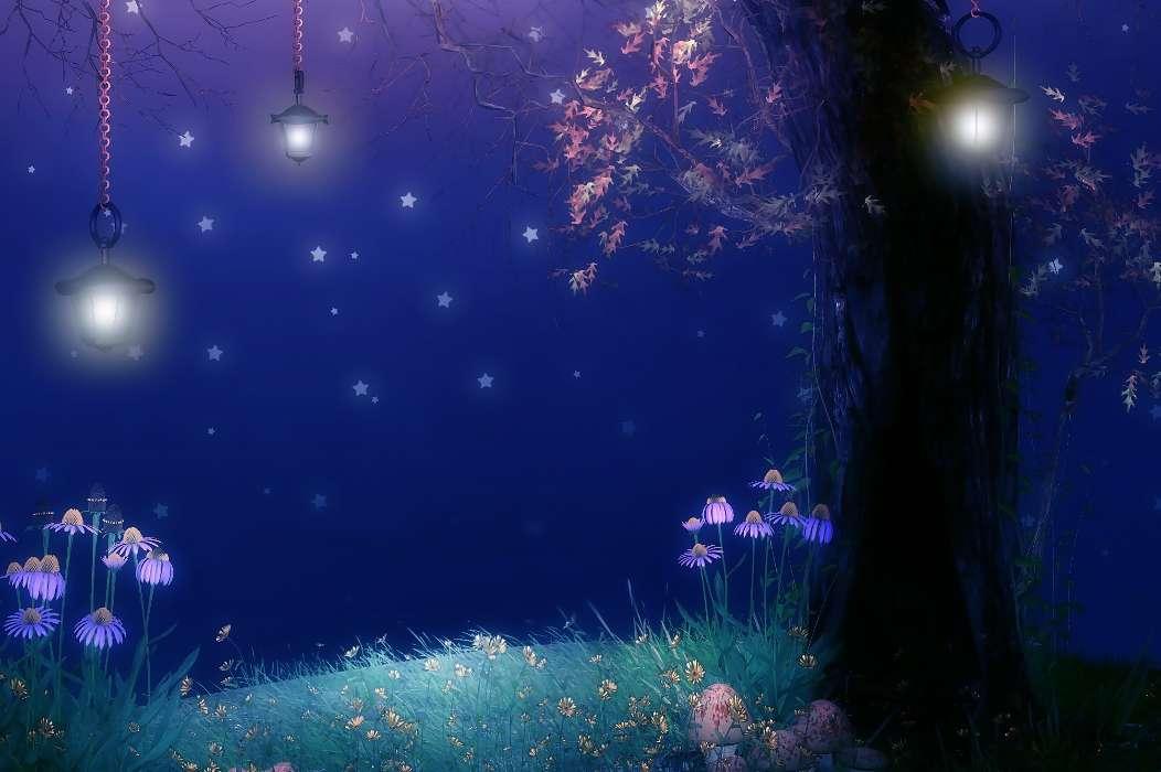 Картинки ночка волшебная, днем рождения картинках