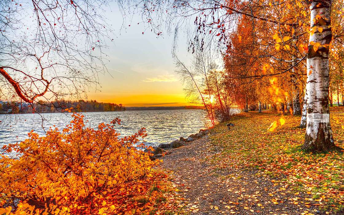 Download mobile wallpaper Landscape, Rivers, Trees, Sunset, Autumn for free.
