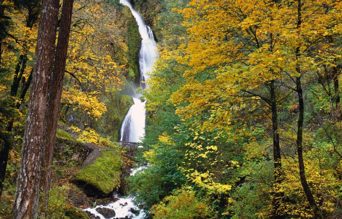 Download mobile wallpaper Landscape, Trees, Autumn, Waterfalls for free.