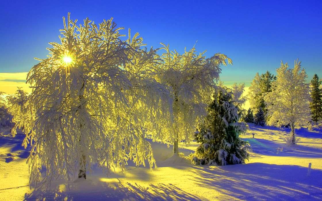 Красивые флэш, зимнего утра картинки