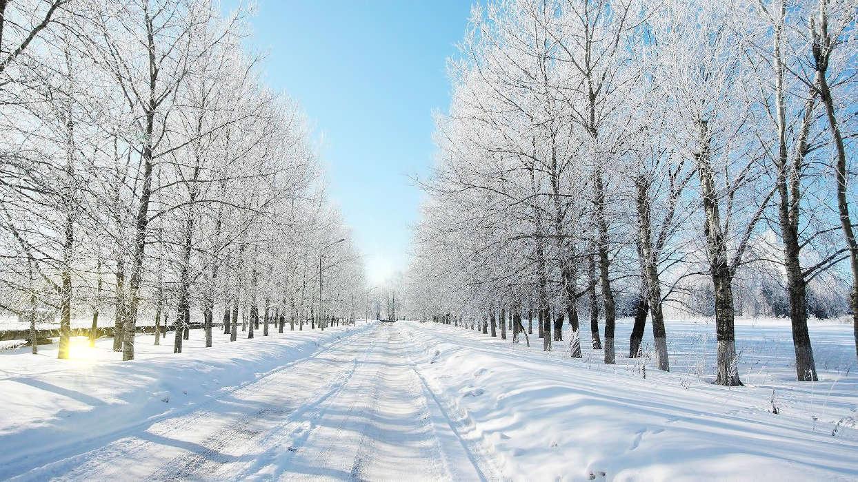 イメージを携帯電話にダウンロード 風景 冬 道路 無料 31918