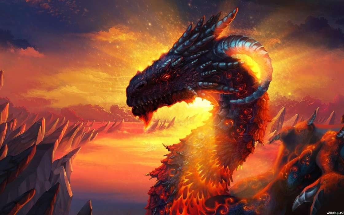 Онлайн, картинки огненные драконы
