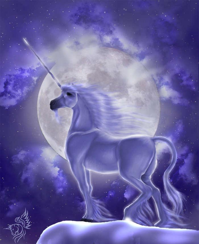 download bilder für das handy tiere fantasie unicorns