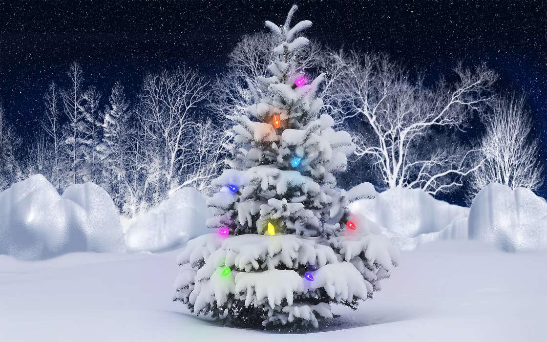 O Tannenbaum Download Kostenlos.Download Bilder Für Das Handy Feiertage Neujahr Tannenbaum