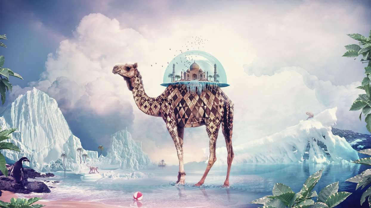 Download mobile wallpaper Animals, Fantasy, Giraffes, Pictures for free.