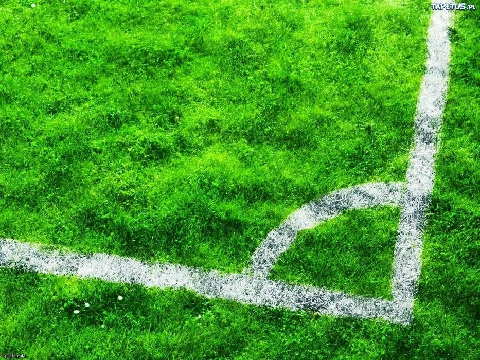 Download Bilder Fur Das Handy Grass Hintergrund Fussball
