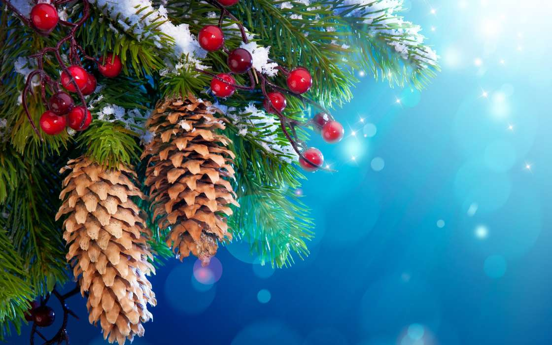 Download mobile wallpaper Holidays, Background, Cones, New Year for free.