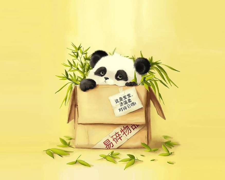 descargar la imagen en teléfono animales fondo pandas gratis 29333