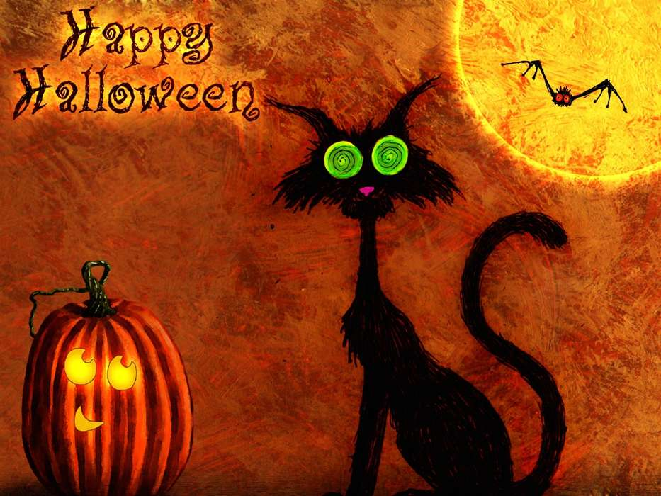 Download mobile wallpaper Holidays, Cats, Halloween, Pictures for free.