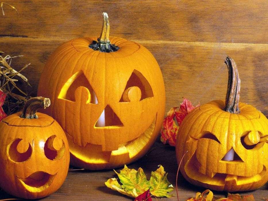 Top Download Bilder für das Handy: Feiertage, Halloween, kostenlos. 37923 &EJ_61