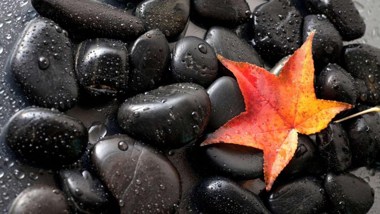 под красивые картинки на черном фоне высокого качества какая