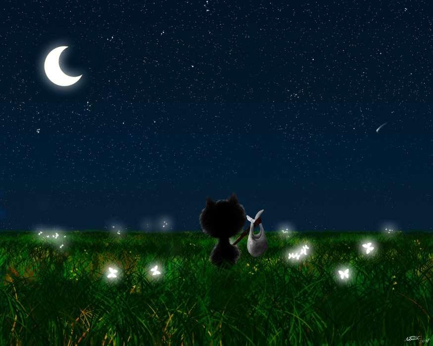 Девушками, анимационные открытки спокойной ночи сладких снов на фоне звездного неба