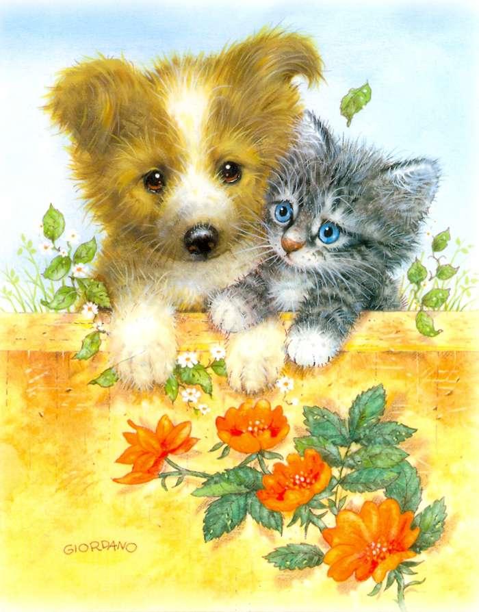 Картинки кошка и собака для детей