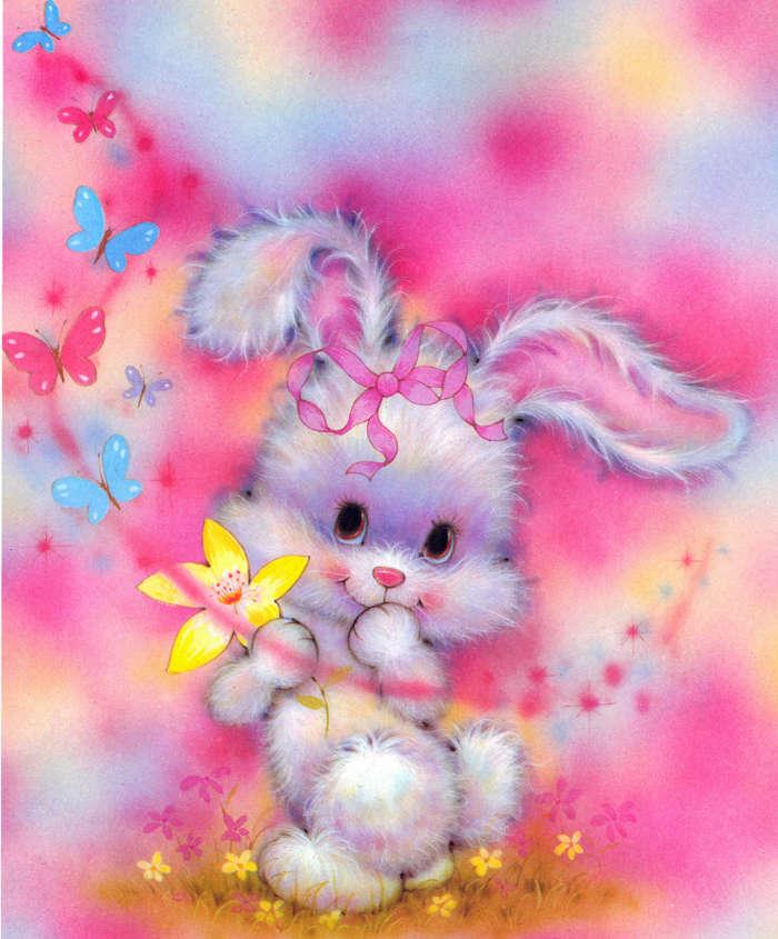 Download Bilder Für Das Handy Tiere Kaninchen Bilder Kostenlos