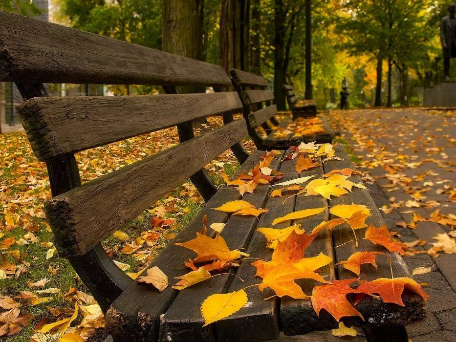 Download mobile wallpaper Landscape, Autumn, Leaves, Streets for free.