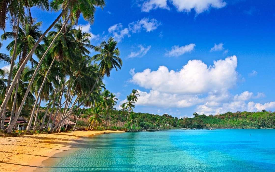 Download Bilder Fur Das Handy Landschaft Sea Strand Kostenlos 42757