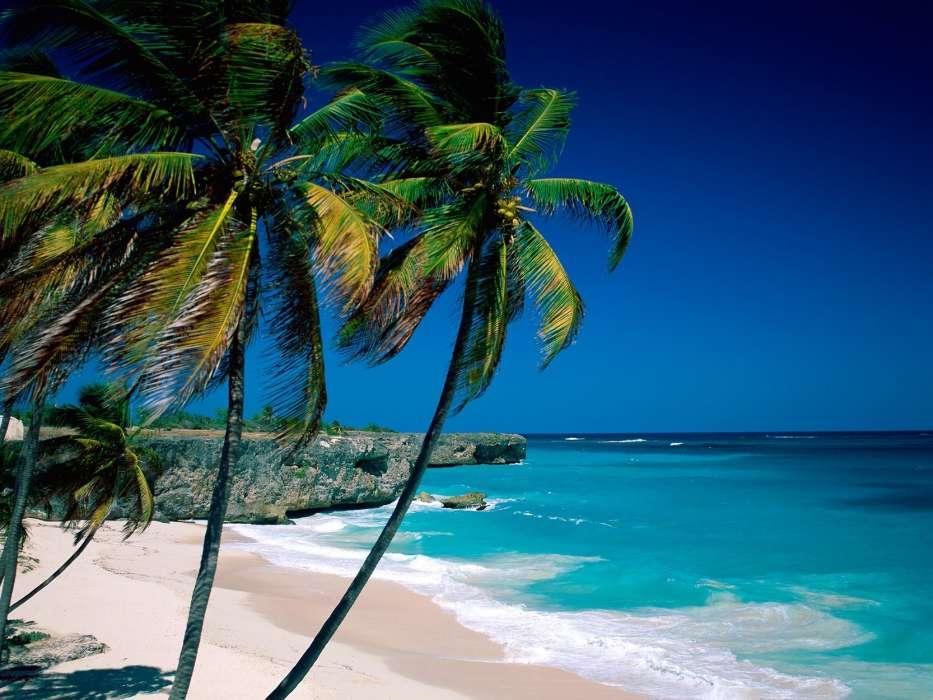 Download Bilder Fur Das Handy Landschaft Natur Sea Strand Kostenlos 47707