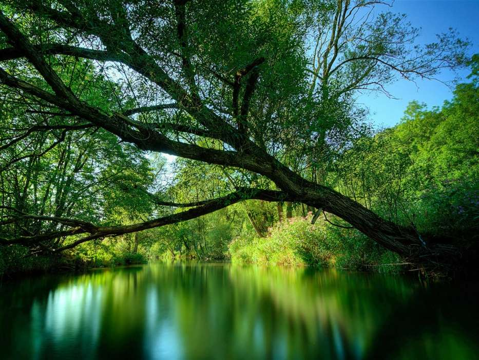 Download Bilder Für Das Handy Landschaft Natur Kostenlos 49123