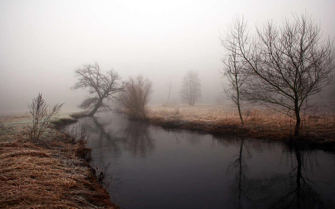 Картинки тусклая природа