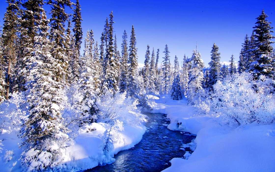 эту картинки пор зиму после столь