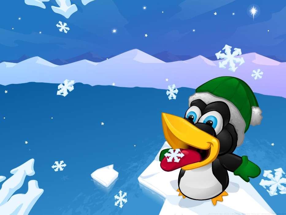 пингвин картинка на телефон двух российских