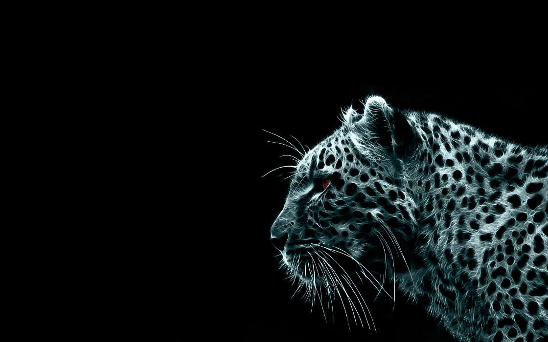Download mobile wallpaper Animals, Tigers, Pictures for free.