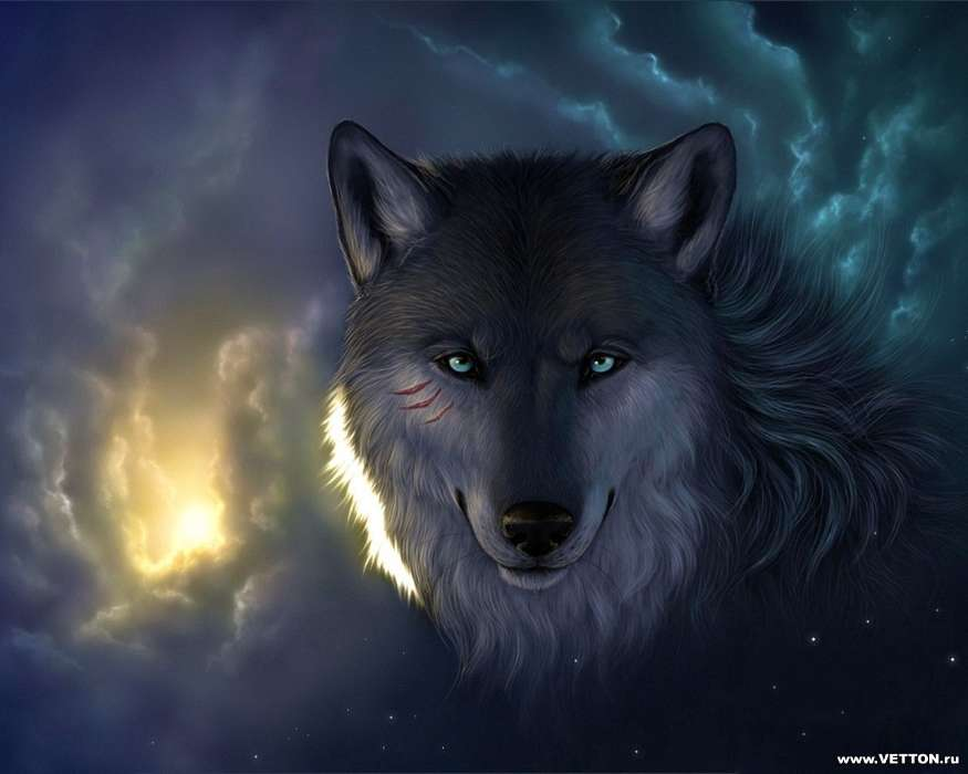 Download mobile wallpaper Animals, Wolfs, Pictures for free.