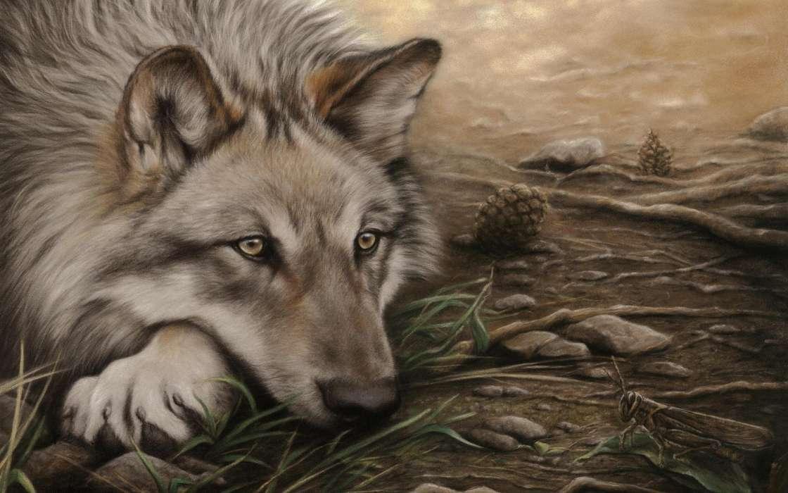 2560, рисунок с волками