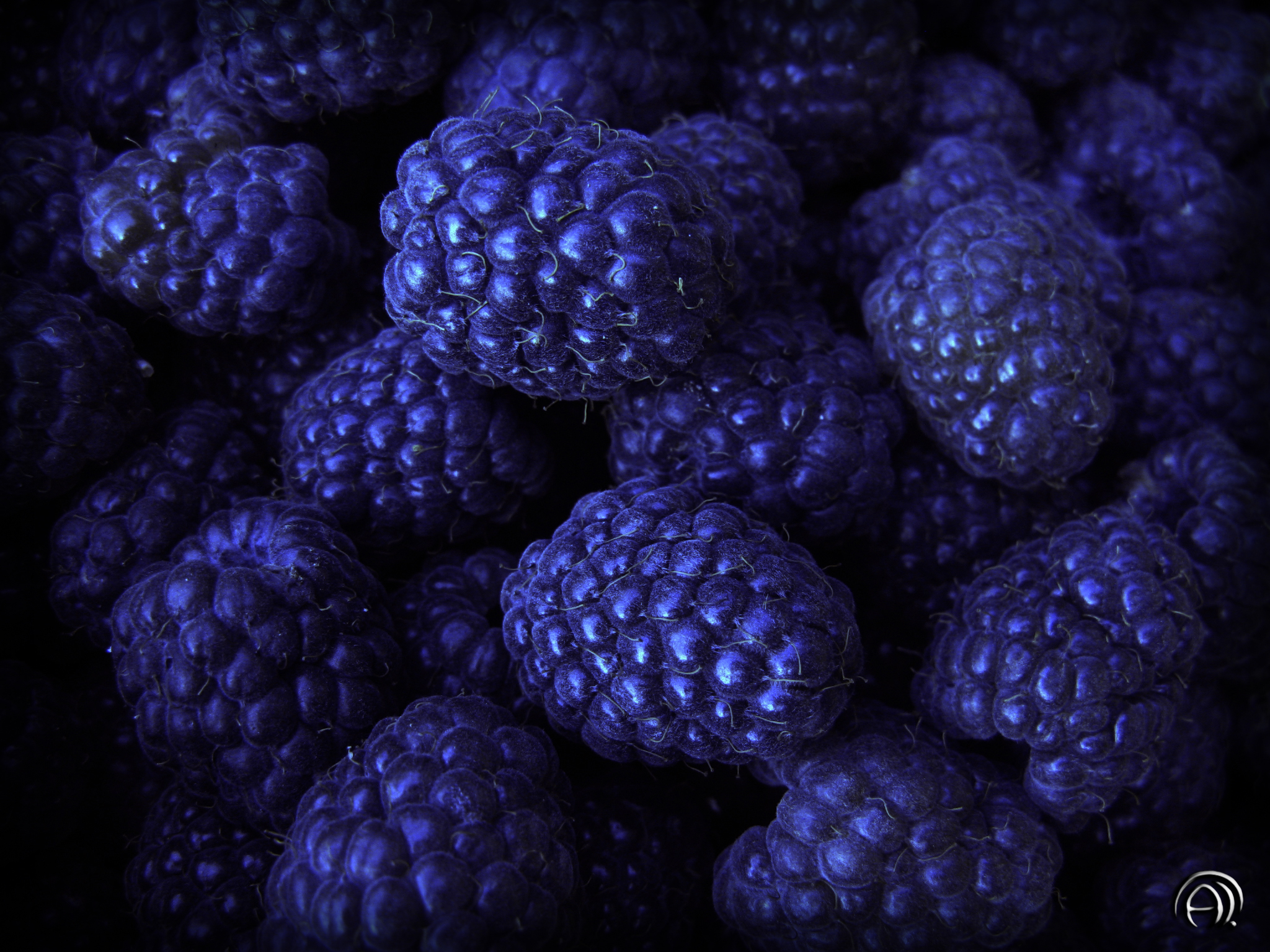 Download mobile wallpaper Food, Background, Bilberries, Berries for free.