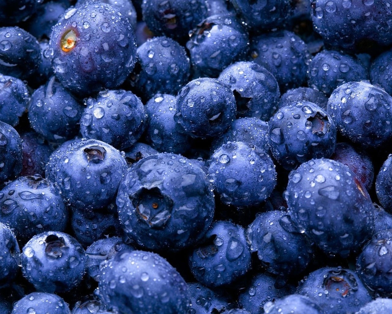 Download mobile wallpaper Plants, Food, Background, Blueberry, Berries for free.