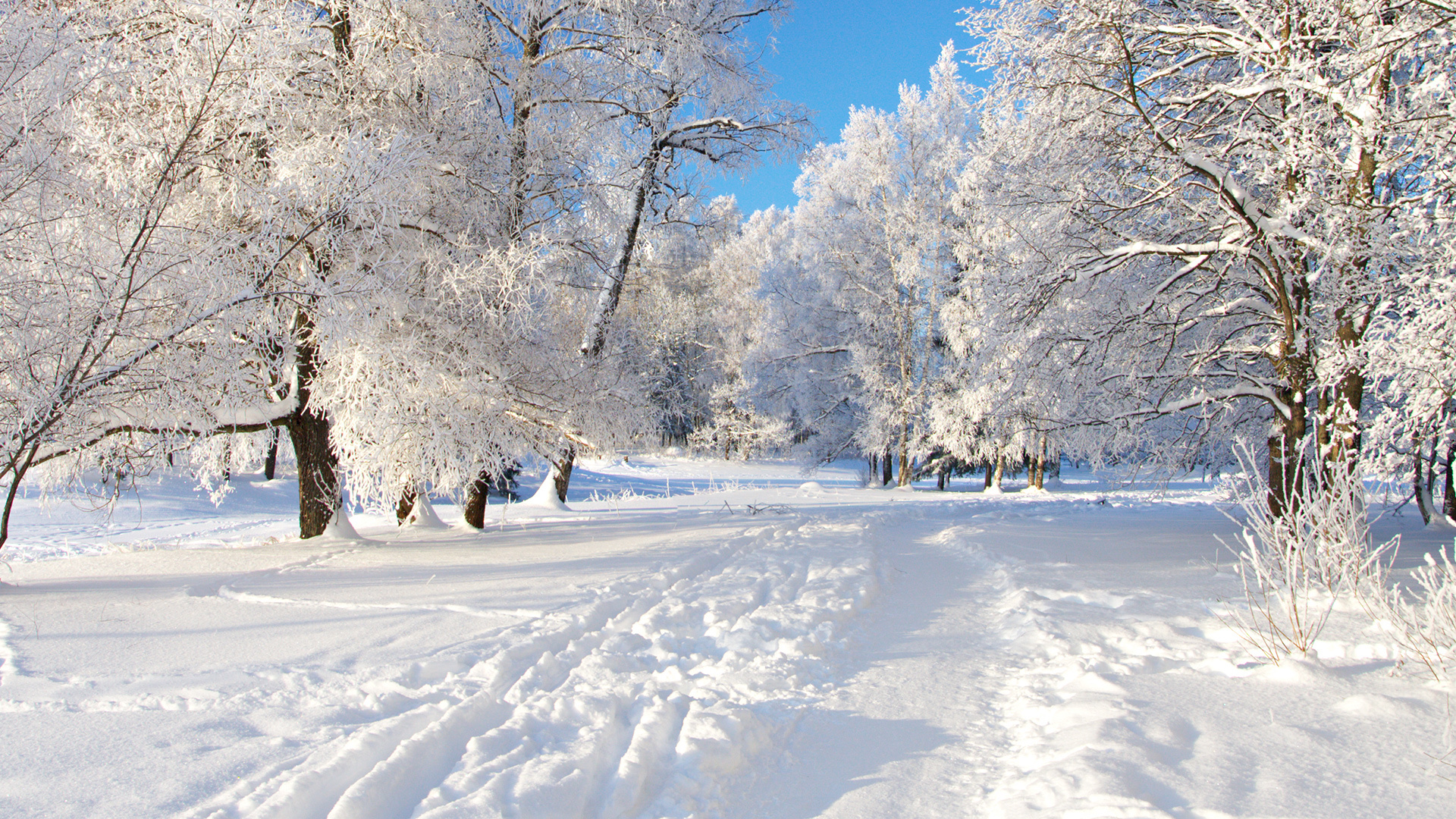 Download mobile wallpaper Landscape, Winter, Snow for free.