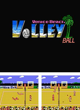 Beach Volleyball: Venice